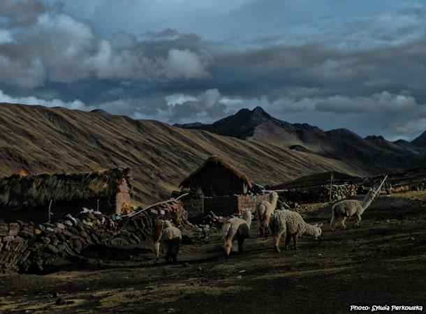 ausangate trek cusco region