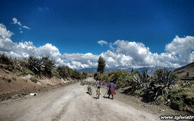 Bicycle trip from Chinchero to Urubamba including Moray and Maras