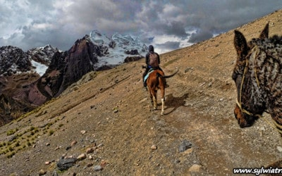 Ausangate horse riding