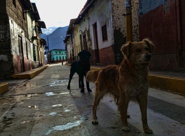 Peru i codzienność