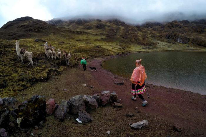 Trekking przez Lares i Patacancha do Machu Picchu