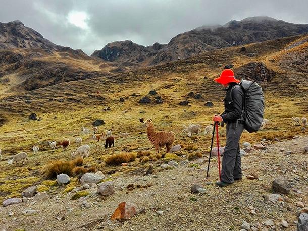 peru wakacje trekkig w Andach