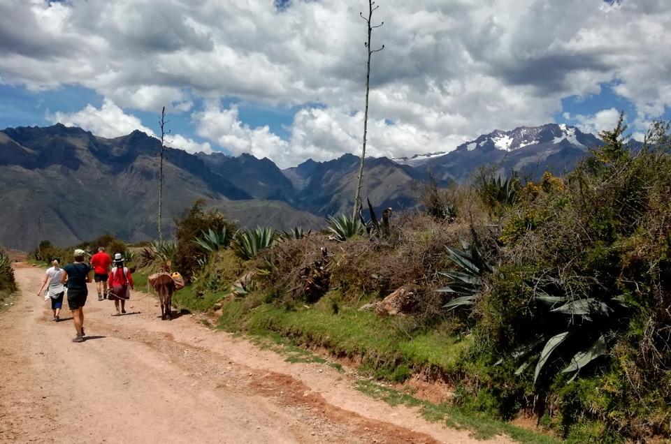 Wyprawy po Peru Andy