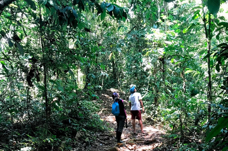 Wycieczki do Peru i wyprawy po dżungli