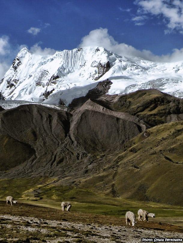 ausangate trekking near cusco