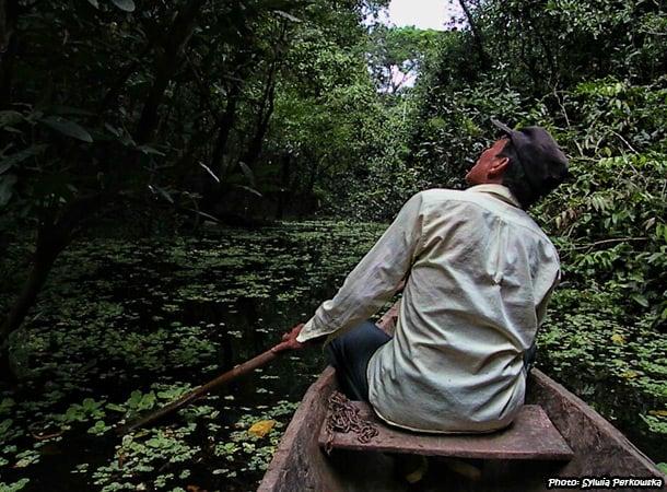 Dżungla Pacaya Samiria w Iquitos