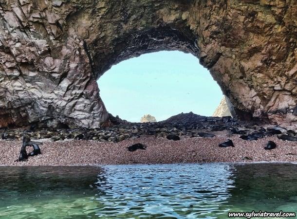 Paracas Ballestas Island