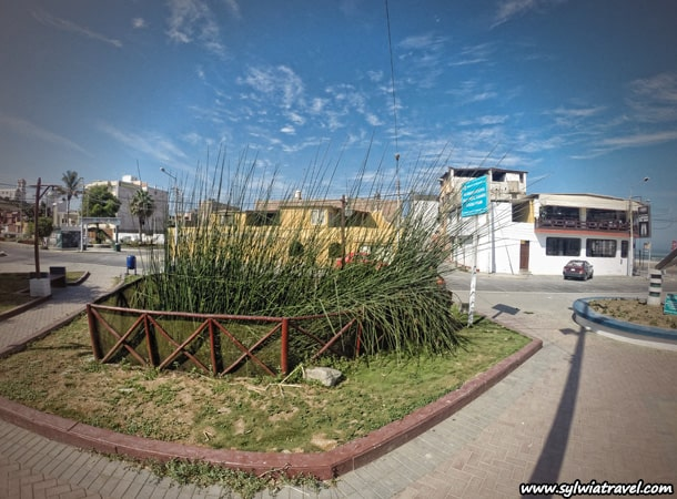 totora-in-huanchaco