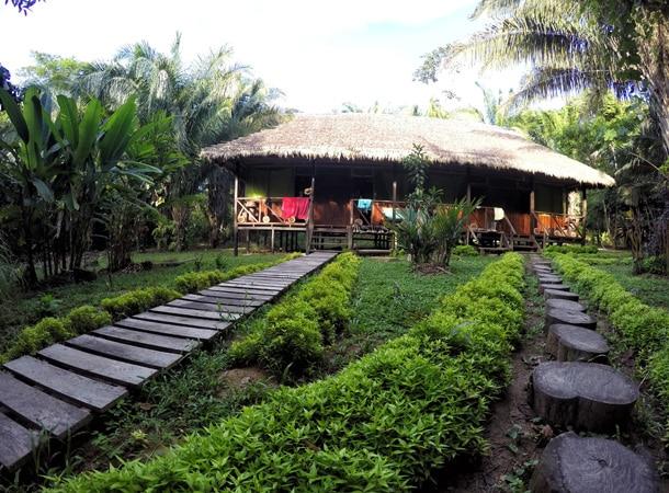 Wyprawy do Peru i peruwiańskiej dżungli