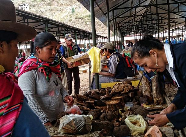 Wyprawy do Peru i ziołolecznictwo