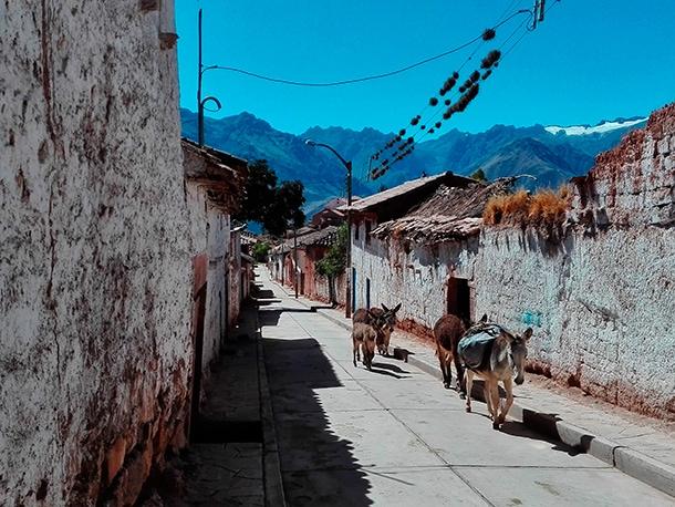Trekking w Peru
