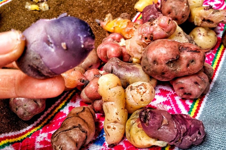 Wycieczki do Peru i Peruwiańska kuchnia