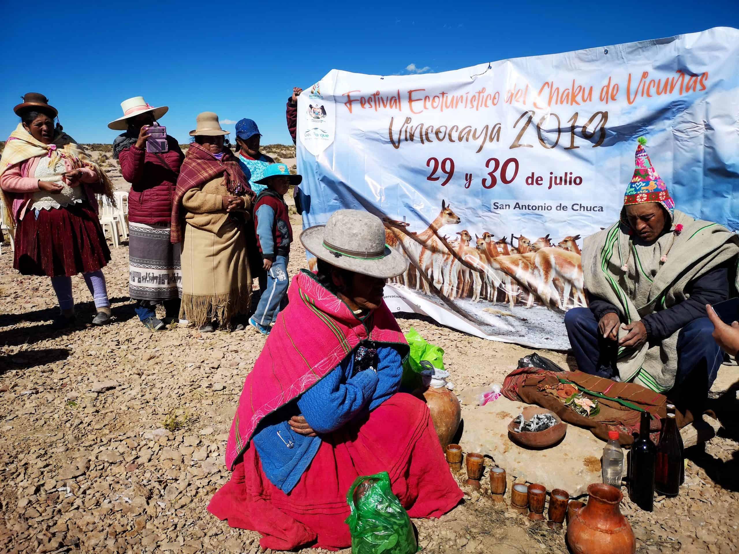 El chaccu w Peru, czyli festiwal polowania na wigonie