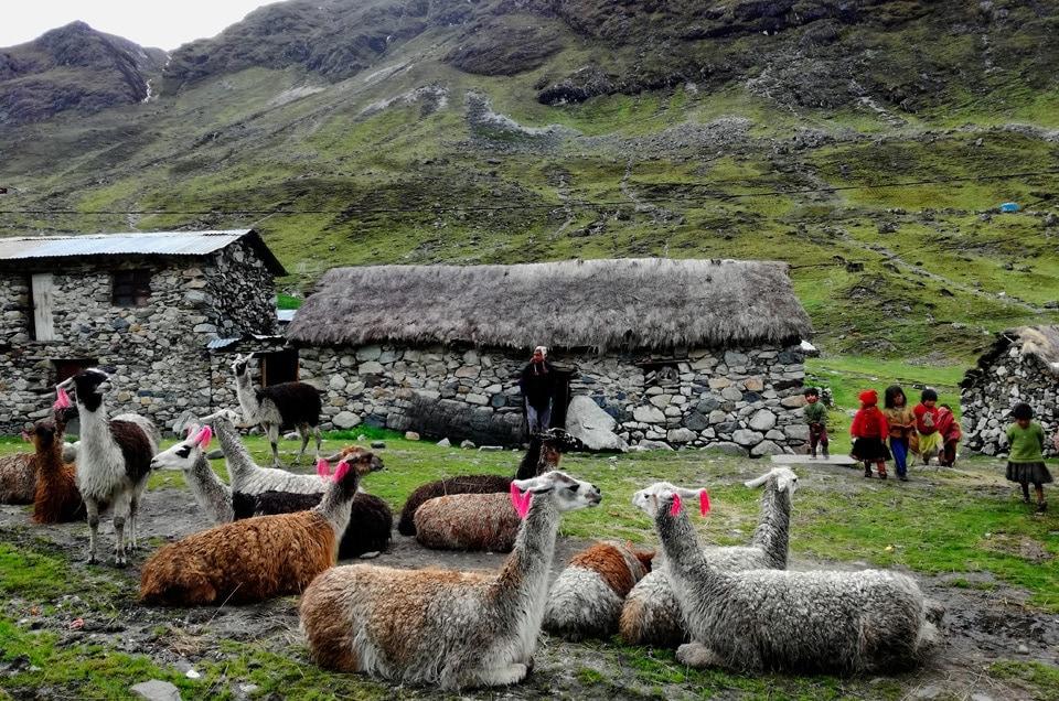 Przewodnik po Peru. Informacje Ogólne