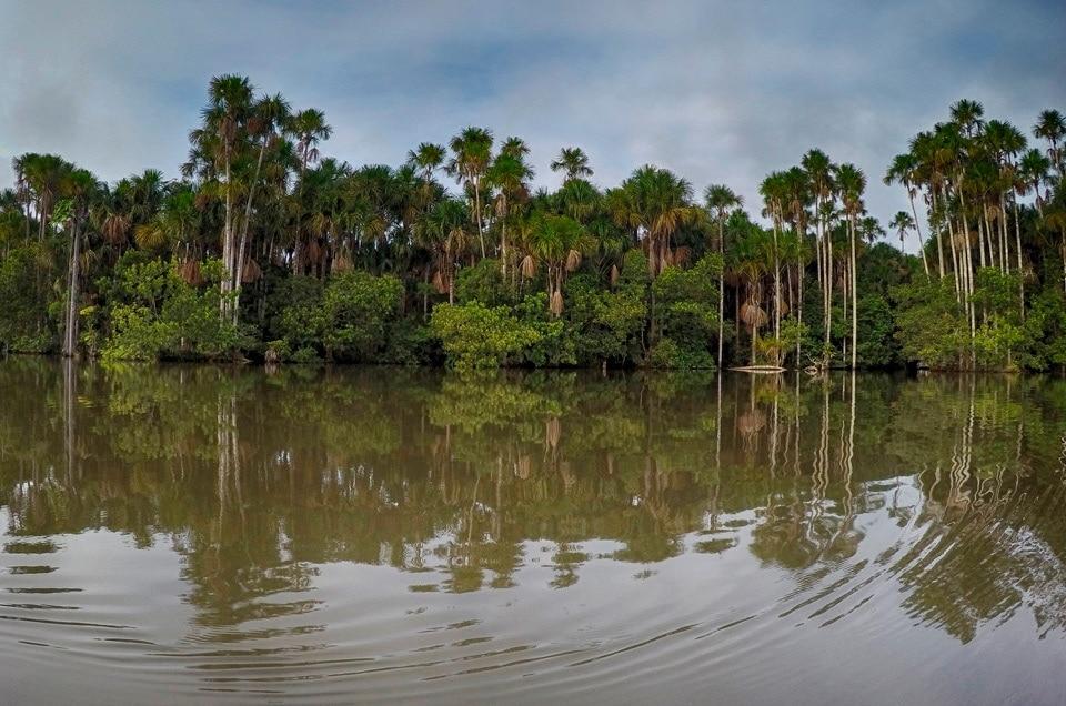 wyprawy do Puerto Maldonado w PERU