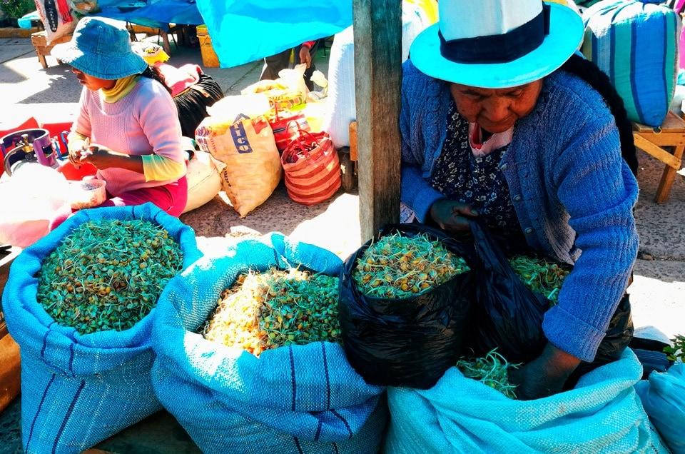 Napoje w Peru i chicha de jora