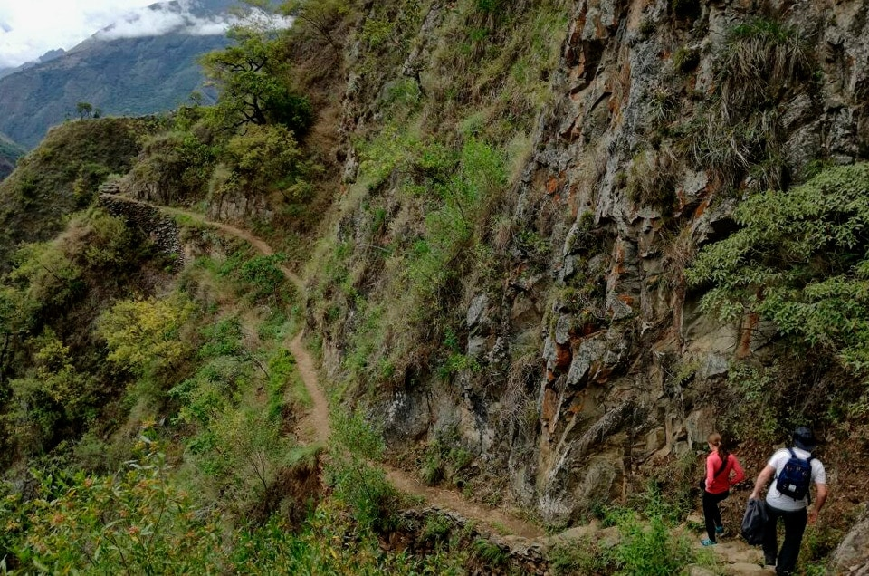 Coffe Jungle Tour do Machu Picchu