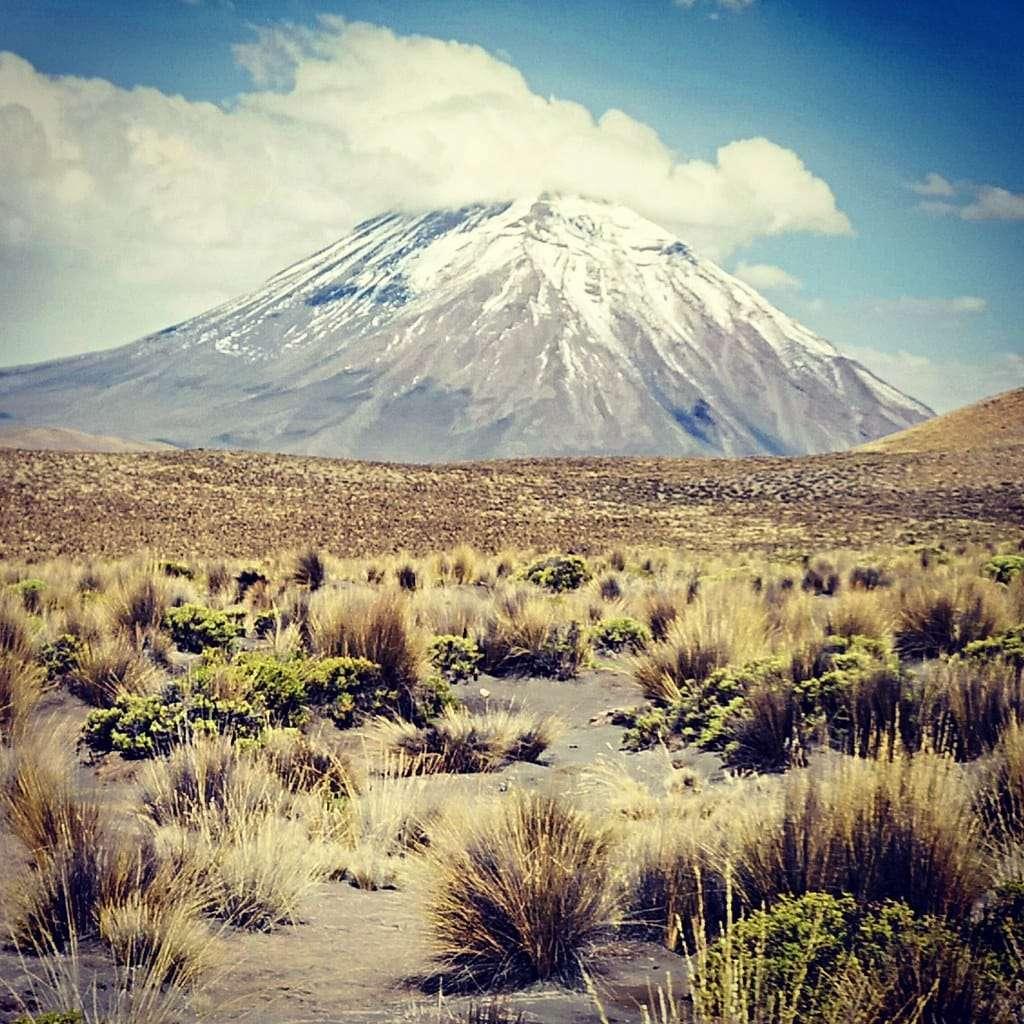 Kanion Colca w Peru wycieczki