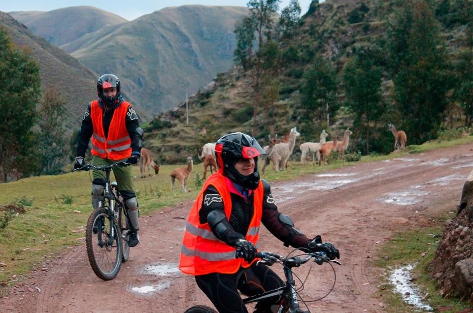Dla nas perełki to Amantani i downhill w przepięknej scenerii wśród alpak