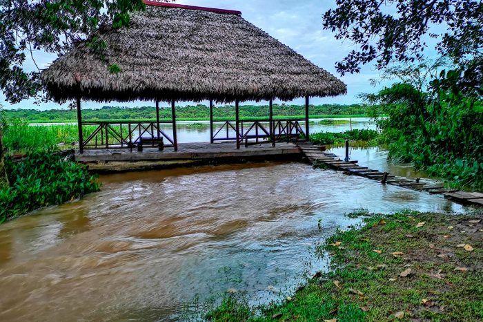 Amazon River in Iquitos – Experience Adventure in the Jungle