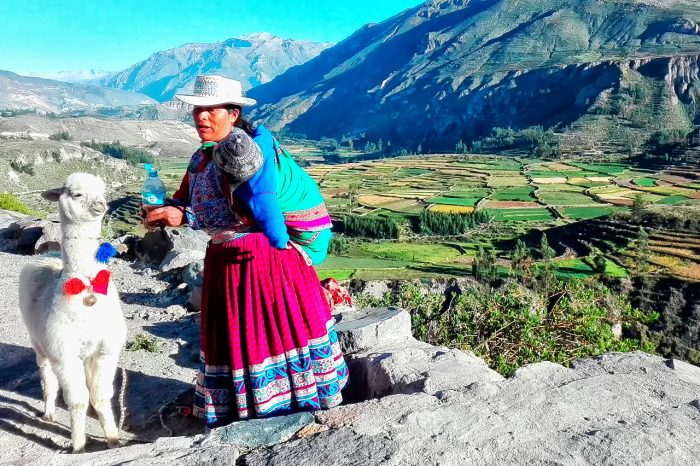 Colca Canyon in Peru with transfer option from Chivay to Puno