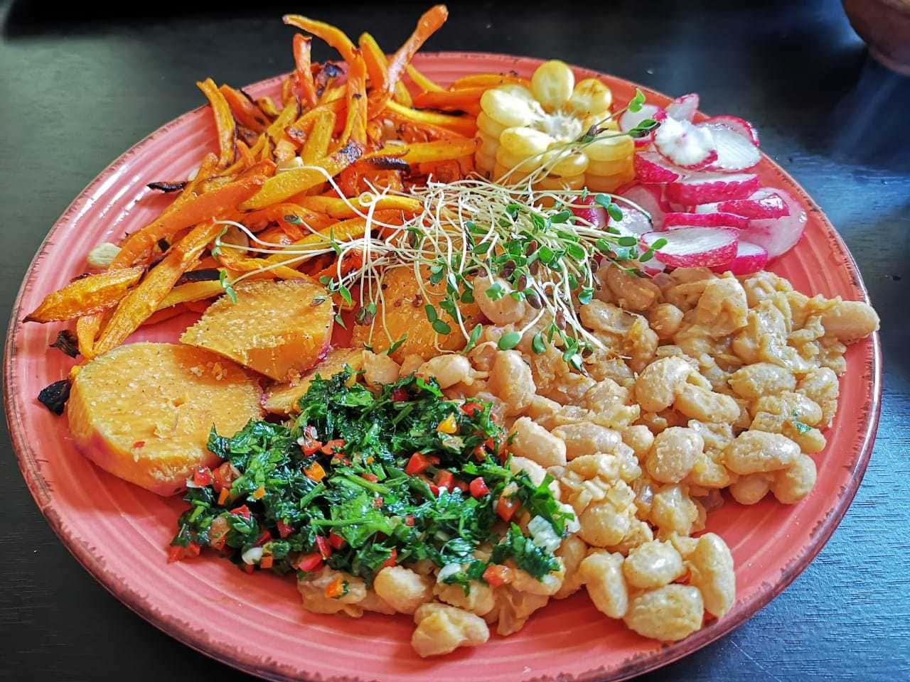 Hodowla kiełek i zdrowe odżywianie